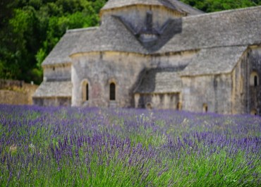 The multiple faces of Provence at hand